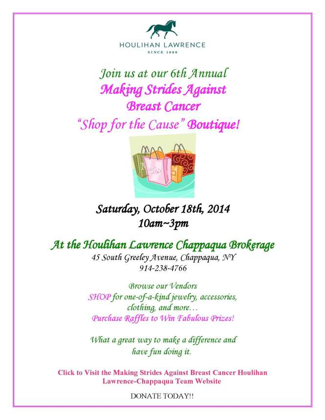 Making Strides Flyer 2014_Page_1